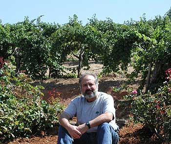 Diamond Creek winemaker, Phil Steinschriber